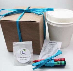 Favor Creative - Eco-Friendly Color Me Herb Favor Kit