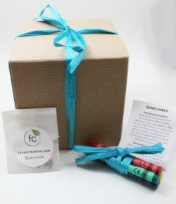 Favor Creative - Color Me Herb Favor Kit