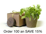 herb-basil-BULK100