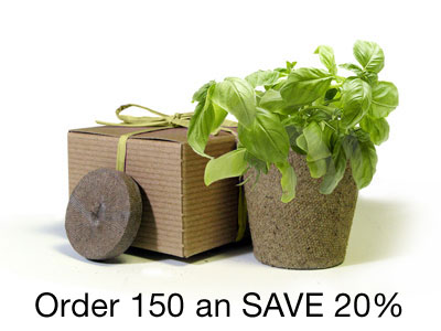 BULK Save 20% - Favor Creative Herb Junior Basil - Eco-Friendly Party Favor