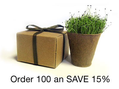BULK Save 15% - Favor Creative Herb Junior Chives - Eco-Friendly Party Favor
