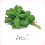 grwng-herb-basil