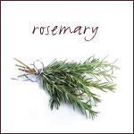 grwng-herb-rosemary