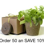 BULK Eco-Friendly Herb Box Favor, Basil - Creative Party Favor