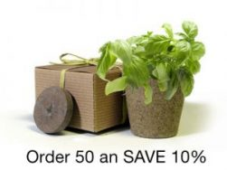 BULK Eco Friendly Herb Box Favor, Basil - Creative Party Favor