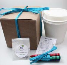 Favor Creative - Eco-Friendly Color Me Herb Favor Kit