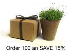 BULK Eco-Friendly Herb Box Favor, Chives - Creative Party Favor