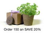 BULK Eco-Friendly Herb Box Favor, Parsley - Creative Party Favor